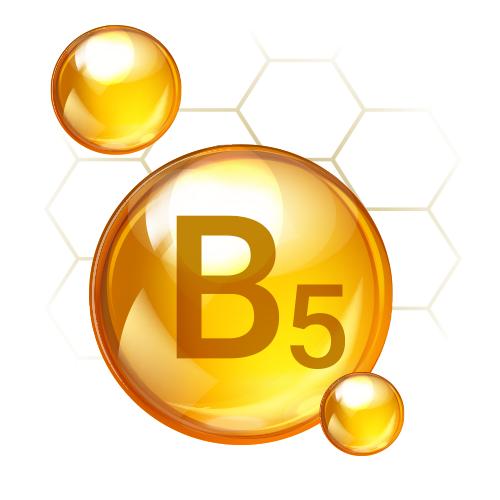 Pro Vitamin B5